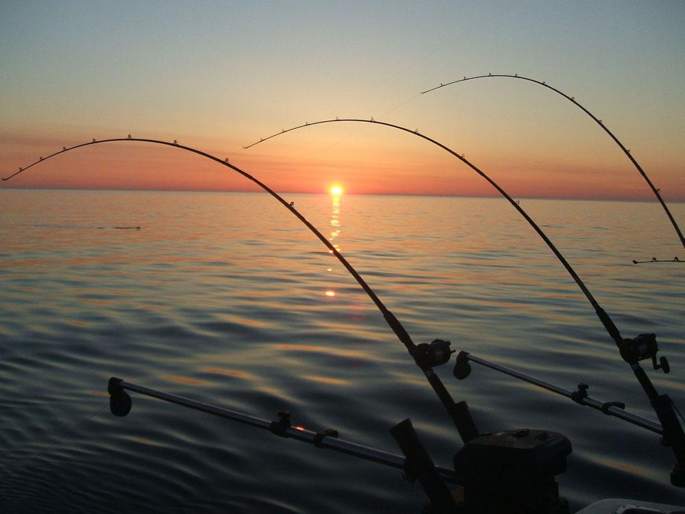 户外课堂:不要空手而归 如何在水库钓大鱼